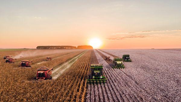 PIL, cala solo in agricoltura per deflazione nei campi