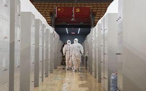 Coronavirus, primo caso in Africa: il contagio in Egitto