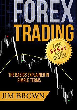 Forex trading: le basi spiegate in termini semplici (sistema di bonus incl. Video) (Forex, Forex per principianti, fare soldi online, trading di valuta, valuta straniera ... Day Trading Book 1) (edizione inglese)